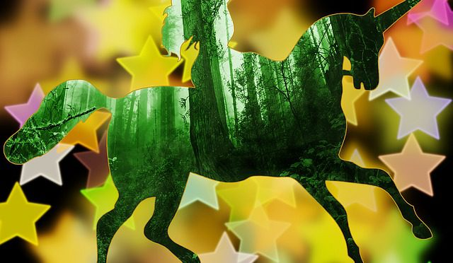 SEEMEA's five unicorns for a billion of dollars